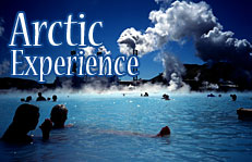 Arctic Experience